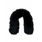 Fur Collar Racoon